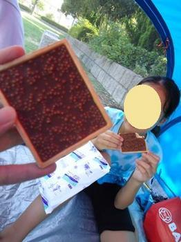 2010_0821_143646-DSC02367.JPG