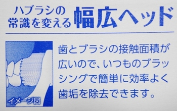 DSC00720 (640x403).jpg